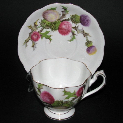 Queen Anne Dundee Thistle Teacup