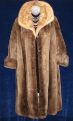 Phantom Beaver with Mink Collar